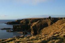 Coast of Forse