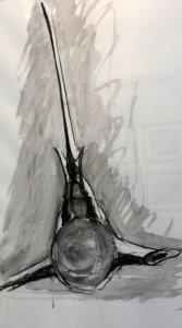 vertibrae drawing